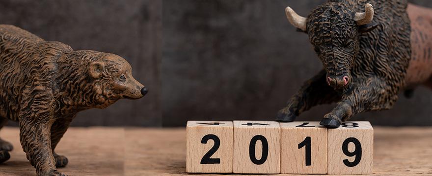 [Dotazník] Výhled na 2019